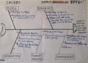 Sample fishbone diagram from MTUMA planning workshop